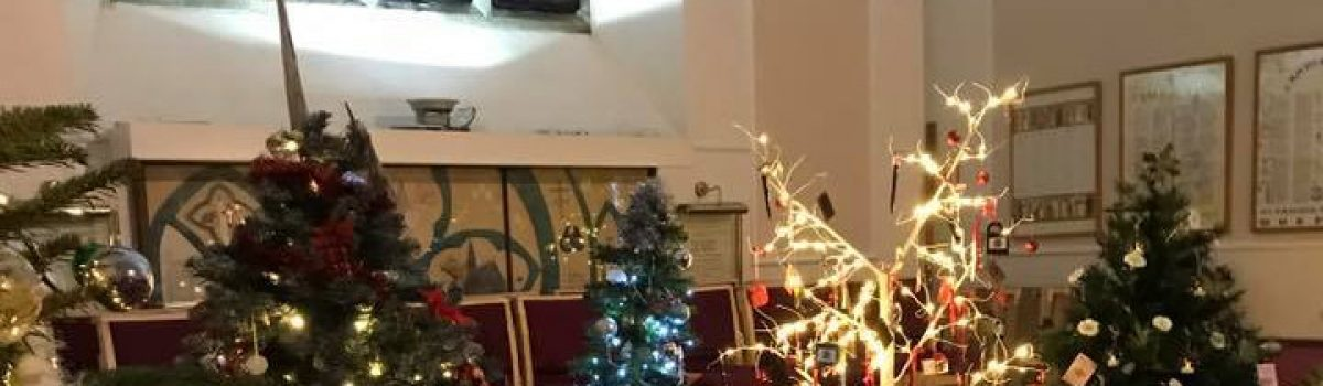 Christmas Trees Sparkle in Inaugural Festival